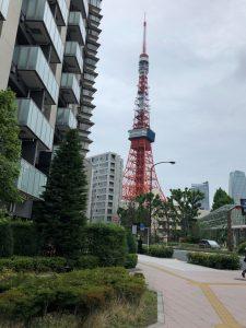 本日の東京タワー!!
